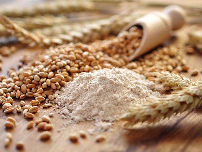 grano e farina